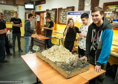 Show of volcano models